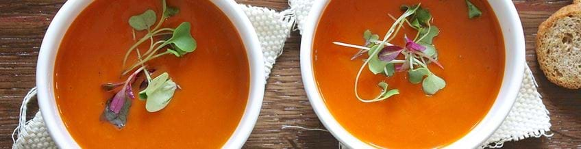 two white cups of tomato soups with cress garnish