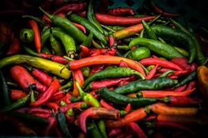 Mixed colour Jalapeno peppers in a pile